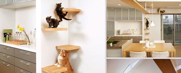 Muebles para mascotas universo muebles for Casa online muebles