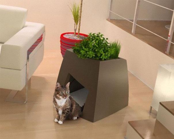 maseta para plantas con casita para gatos